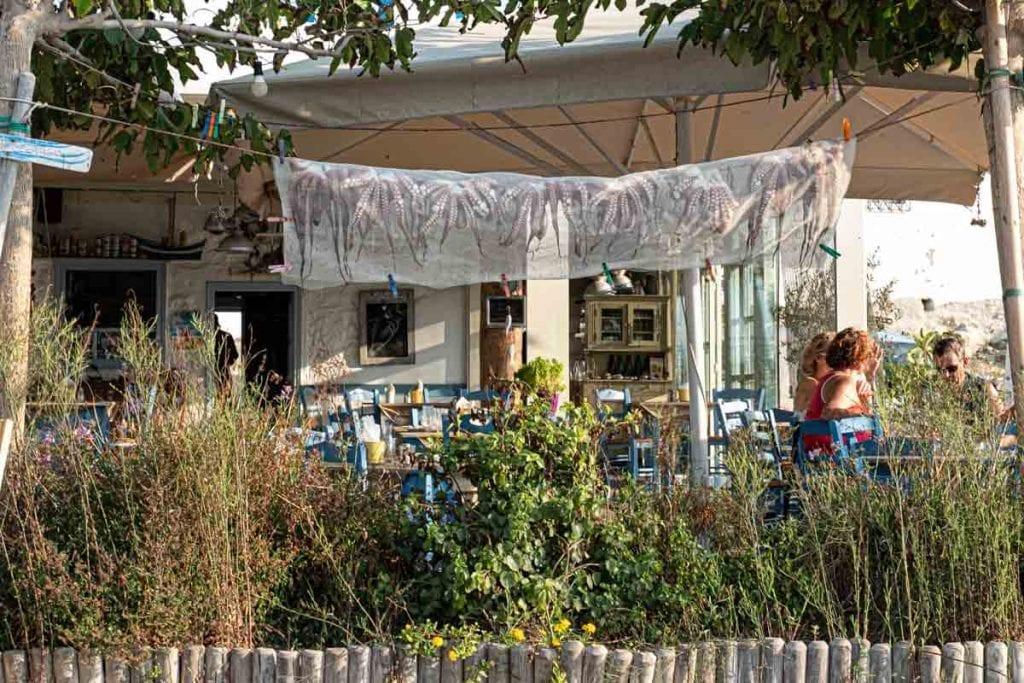 תמנונים מסעדה פארוס יוון ענבל כבירי